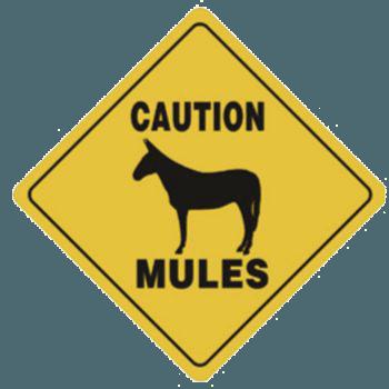 mulecaution