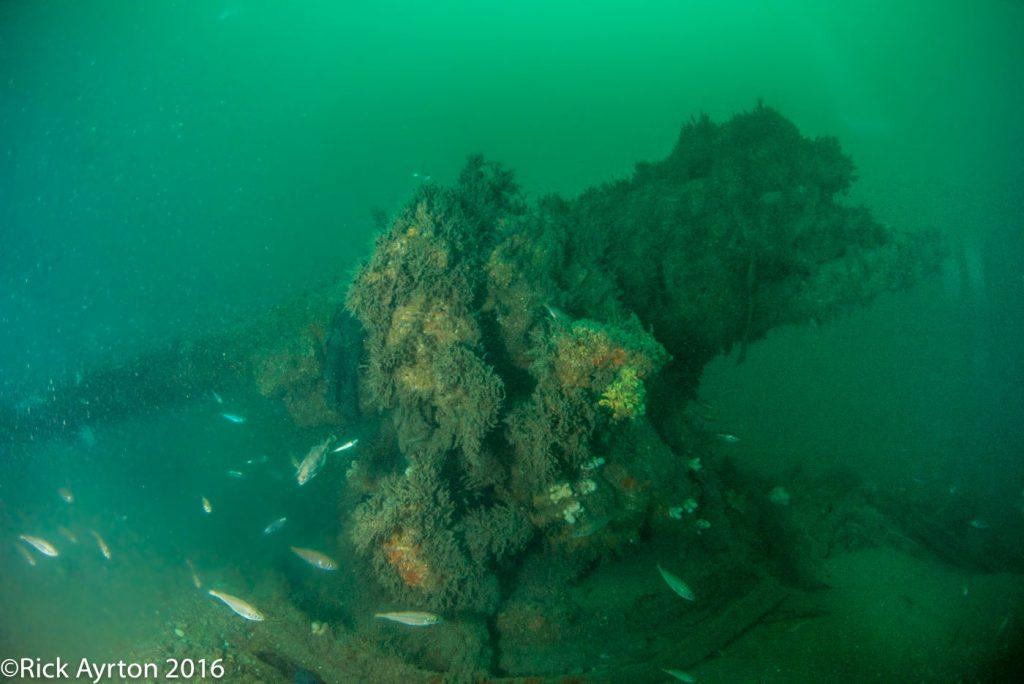 HMS Boadicea forward gun